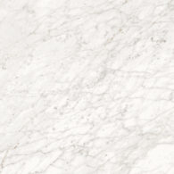02576_APUANIAN WHITE_60X119,5_D