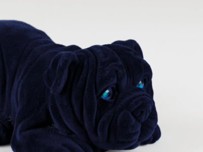 devilisch_bulldog_deco_light_blue_-3