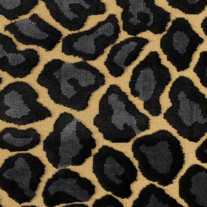 it_s_a_wild_world_panther_baby_carpet_200x300_-2