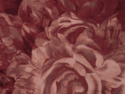 stitchy_roses_carpet_170_x_2406